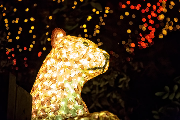 Zoo Lights: Wild Holiday Fun at the San Antonio Zoo